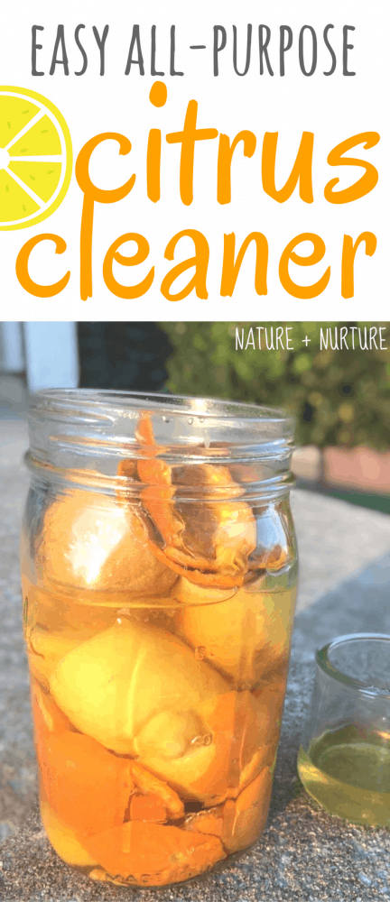 Making homemade citrus cleaner is simple. Make this super easy, effective cleaning vinegar to use in your kitchen, bath, and all over your home!