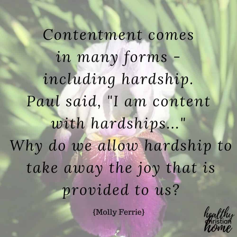Christian contentment quote on a background photo of an iris flower.