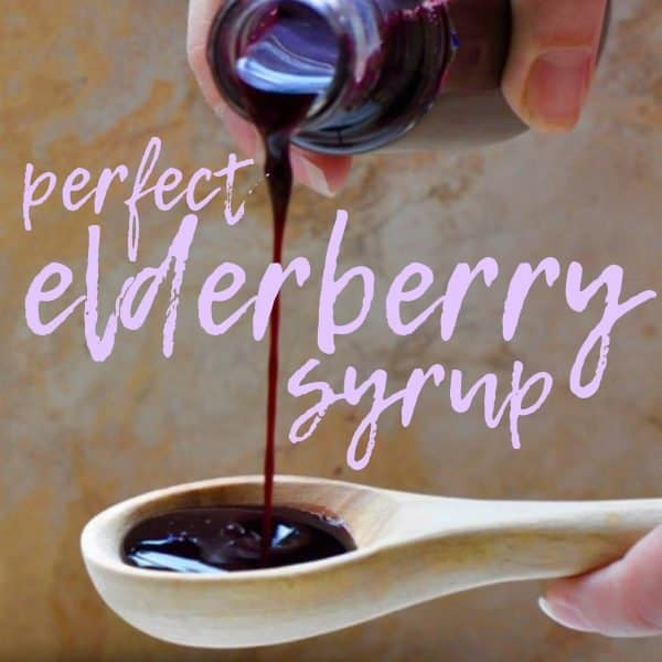 Thick Elderberry Syrup Recipe {no more spilling!}