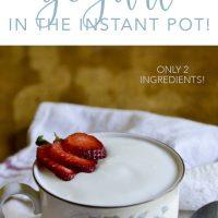 Easy Homemade Yogurt in the Instant Pot